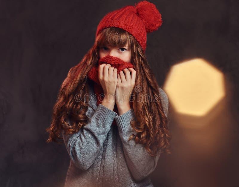 Porträt eines schönen Rothaarigemädchens, das eine warme Strickjacke trägt, bedeckt ihr Gesicht mit einem Schal stockfotografie