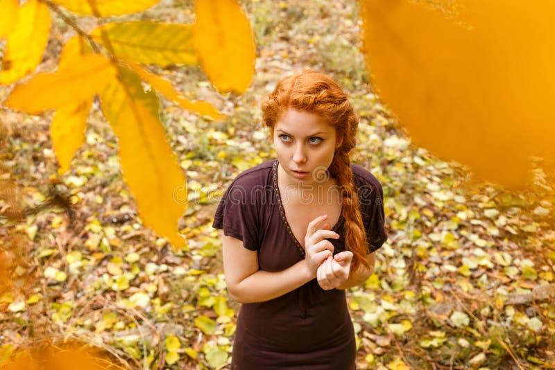 Porträt eines schönen rothaarigen Mädchens im Herbstwald stockfotografie