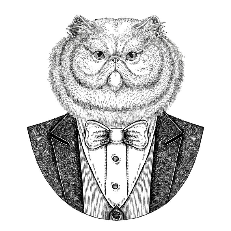 Porträt flaumige der gezeichneten Illustration persische Katze Hippies Tierhand für Tätowierung, Emblem, Ausweis, Logo, Flecken,  vektor abbildung