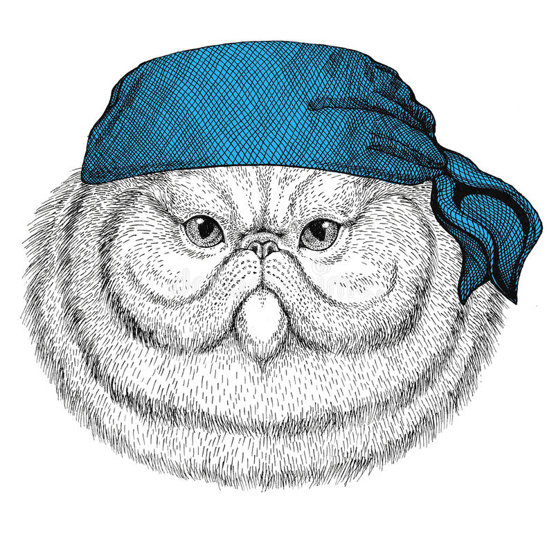 Porträt flaumigen Bandana oder Halstuch oder Bandanna des wilden Tieres der persischen Katze tragenden Bildes für Piraten Seaman  vektor abbildung