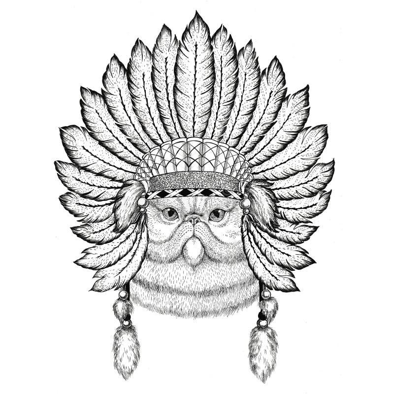 Porträt flaumigen tragenden Hutes indiat wildes Tier der persischen Katze mit Federn Boho-Artweinlese-Stichillustration lizenzfreie abbildung
