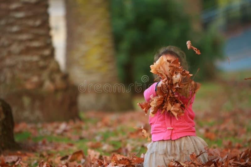 Porträt im Freien des jungen glücklichen Kindermädchens, das mit Herbst L spielt lizenzfreies stockfoto