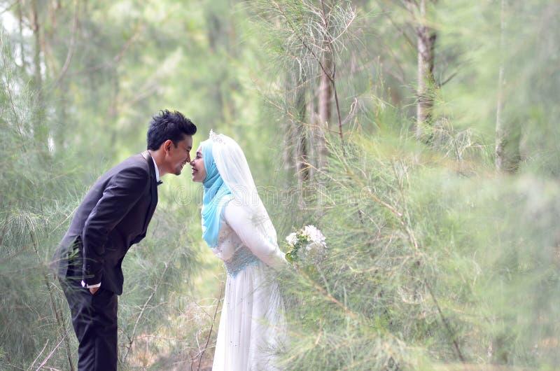 Porträt im Freien eines reizenden malaysischen Hochzeitspaares in einem schönen Park stockbild