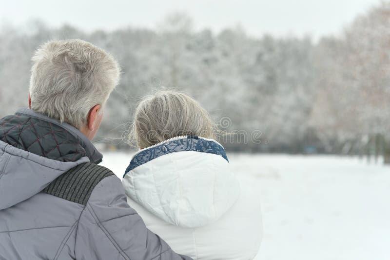 Porträt von älteren Paaren stockbild
