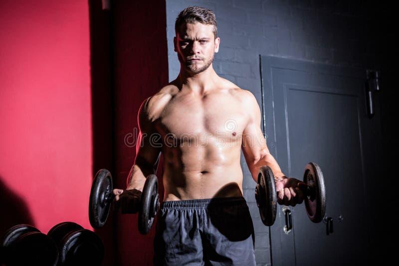 Porträt von anhebenden Dummköpfen des muskulösen Mannes lizenzfreie stockfotografie