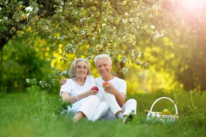 Porträt von den glücklichen älteren Paaren, die Picknick haben stockbilder