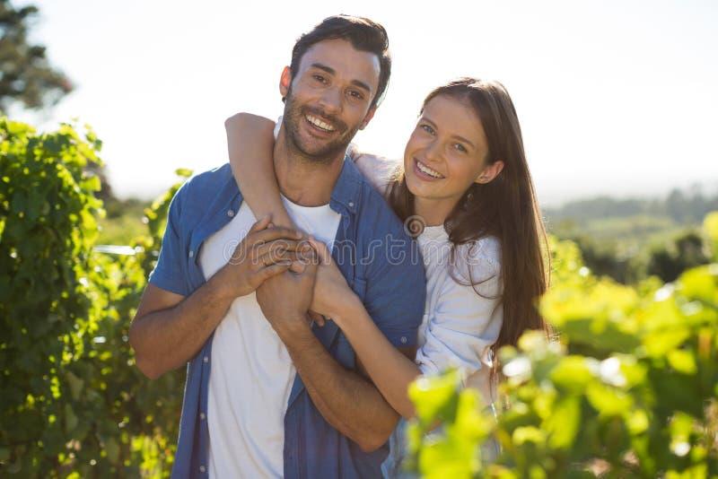 Porträt von den netten Paaren, die am Weinberg umfassen stockbilder