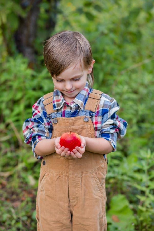 Portr?t von einem netten Jungen in einem Hut im Garten mit einem roten Apfel, Gef?hle, Gl?ck, Nahrung Herbsternte von ?pfeln lizenzfreie stockbilder