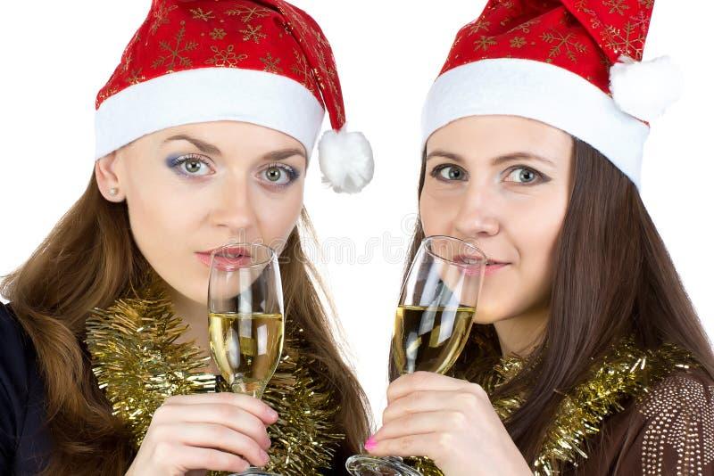 Porträt von glücklichen Frauen mit den Gläsern lizenzfreies stockbild