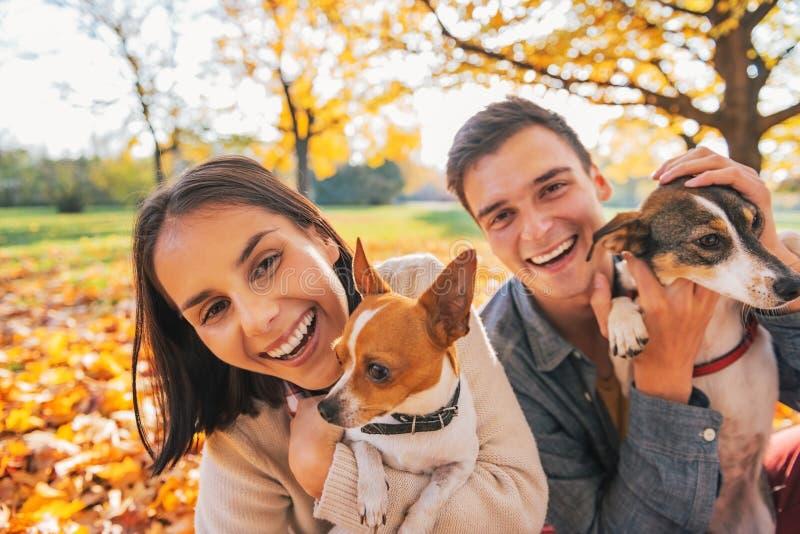 Porträt von lächelnden jungen Paaren mit Hunden draußen lizenzfreie stockfotografie