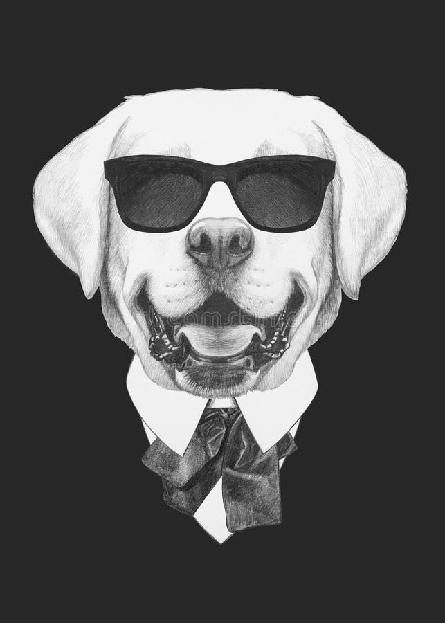 Porträt von Labrador in der Klage lizenzfreie abbildung