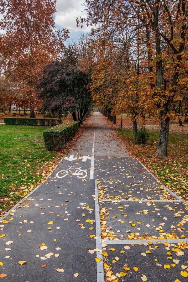 Porträtansicht des Radfahrerweges und des Fußgängerweges im bunten Park stockbild