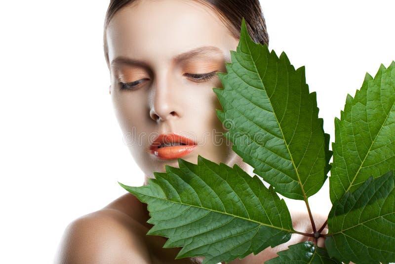 Porträtschönheits-Frauengesicht Schönes vorbildliches Girl mit perfekter frischer sauberer Haut Mädchen mit grünen Blättern stockbilder