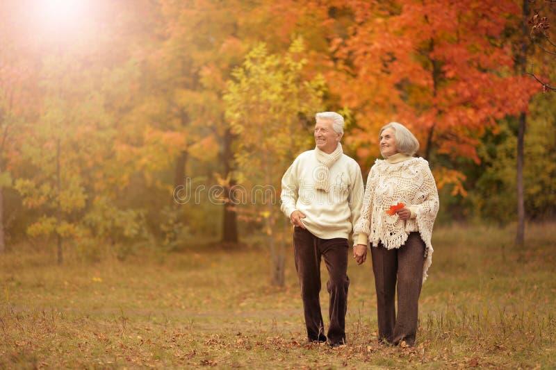 Porträtt av en lycklig äldre kvinna och man royaltyfri bild