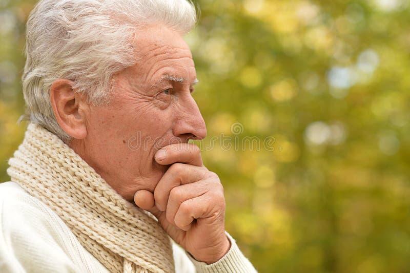 Porträtt av en tänkande pensionär i parkens bön arkivbilder