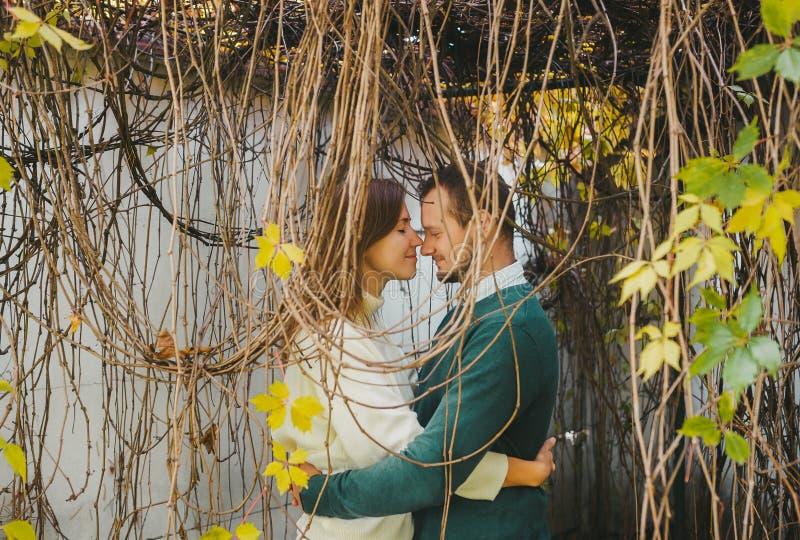 Porträtt av ett kärleksfullt par som står utanför under hänggrenarna av ett stort träd arkivbild