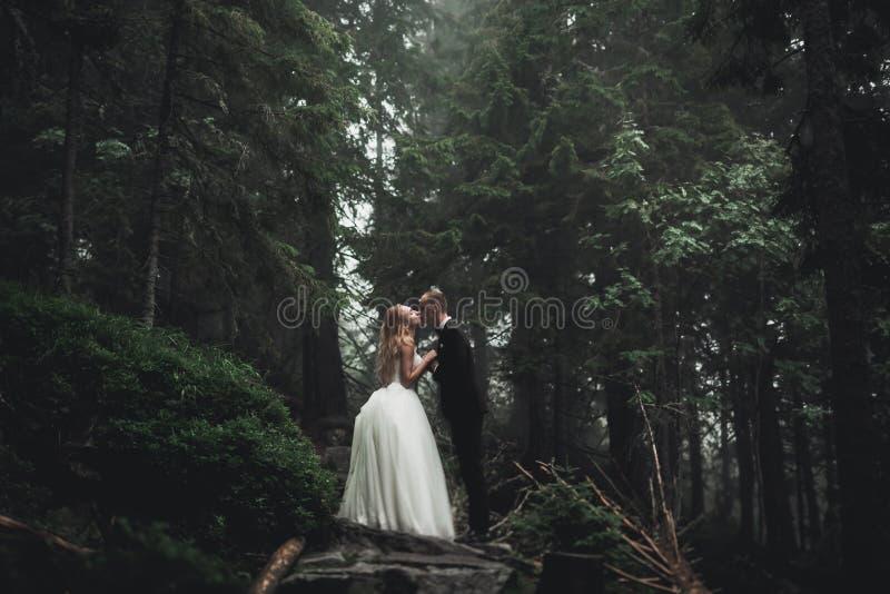 Portr?t der Hochzeitspaare im Fr?hjahr k?ssen Natur-Nahaufnahme stockfoto