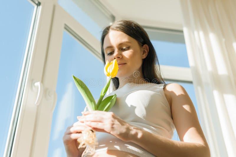 Portr?t der sch?nen jungen schwangeren Frau mit gelber Tulpenblume Sonniger Tag des Fr?hlinges stockfotografie