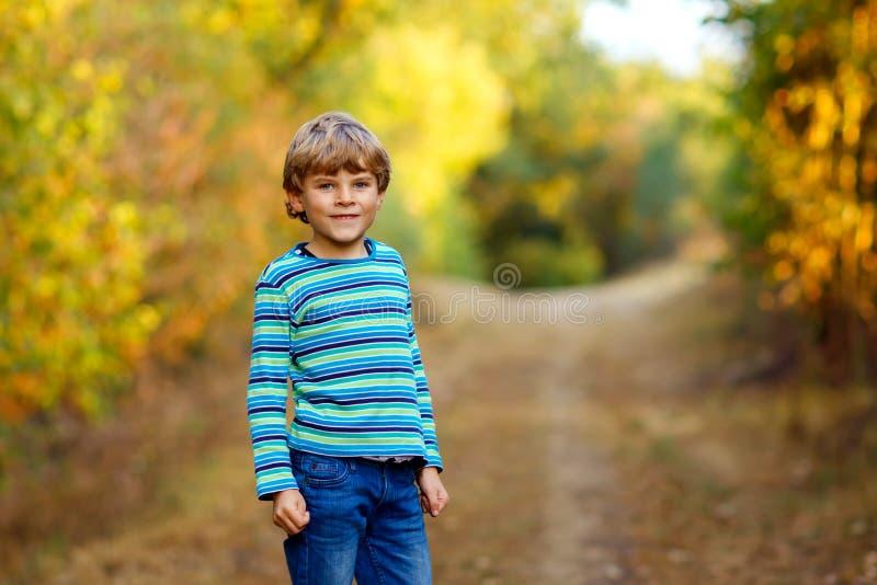 Portr?t des kleinen k?hlen Kinderjungen im Waldgl?cklichen gesunden Kind, das Spa? auf warmem sonniger Tagesfr?hherbst hat Famili stockfotos