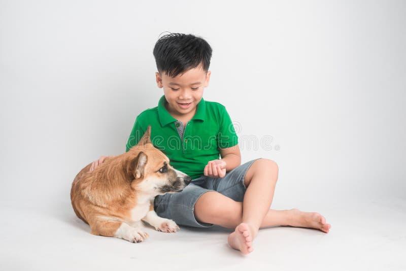 Portr?t eines frohen kleinen Jungen, der Spa? mit Waliser-Corgihund auf dem Boden am Studio hat lizenzfreies stockbild