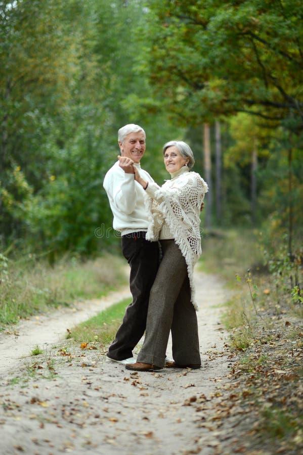 Portr?t von den ?lteren Paaren, die in Herbstwald gehen lizenzfreies stockfoto