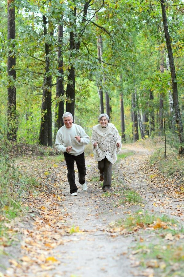 Portr?t von den ?lteren Paaren, die in Herbstwald gehen lizenzfreies stockbild