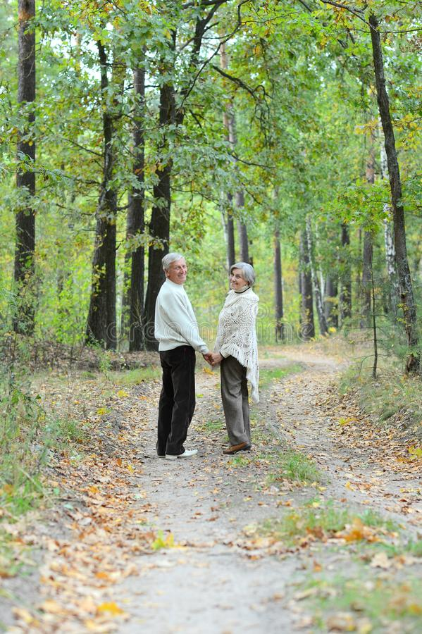 Portr?t von den ?lteren Paaren, die in Herbstwald gehen stockfotografie