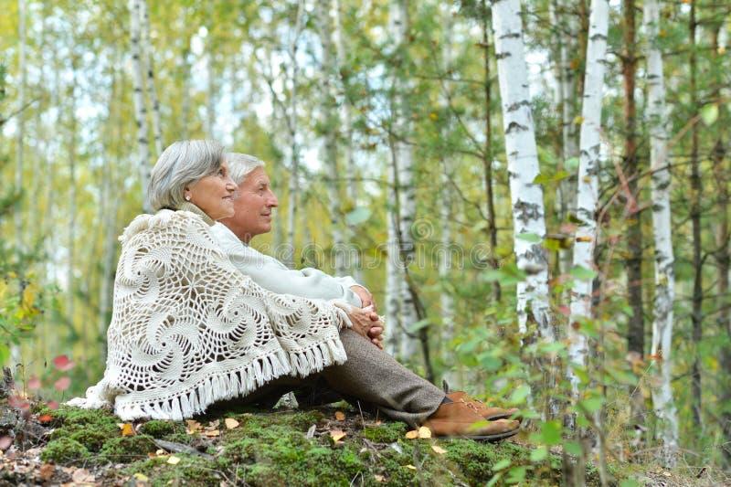 Portr?t von den sch?nen ?lteren Paaren, die im Herbstpark sitzen lizenzfreie stockfotografie