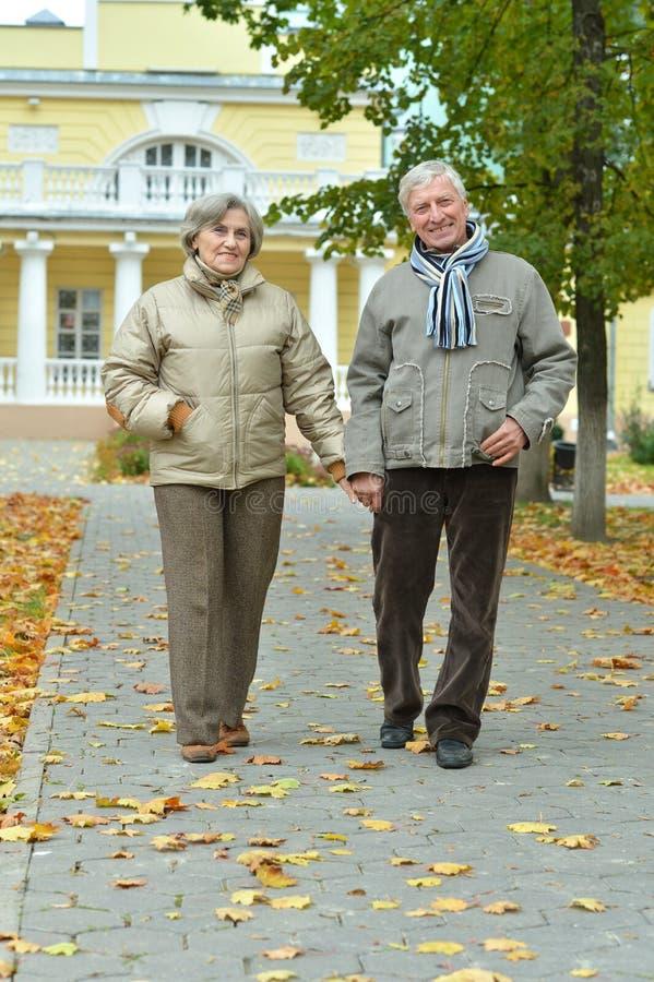 Portr?t von gl?cklichen ?lteren Paaren im Herbst parken stockfoto