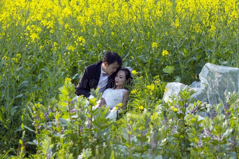 Portraint chinês do casamento dos pares no campo de flor do cole imagem de stock royalty free