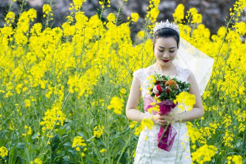 Portraint da noiva com o vestido de casamento branco no campo de flor do cole fotos de stock