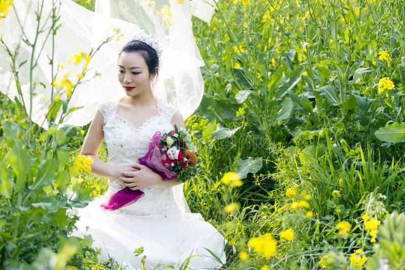 Portraint da noiva com o vestido de casamento branco no campo de flor do cole fotos de stock royalty free