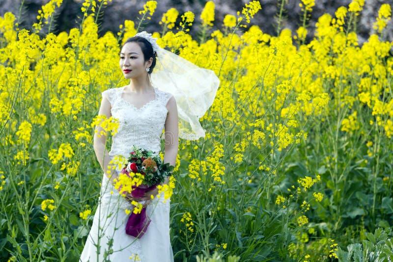 Portraint da noiva com o vestido de casamento branco no campo de flor do cole foto de stock