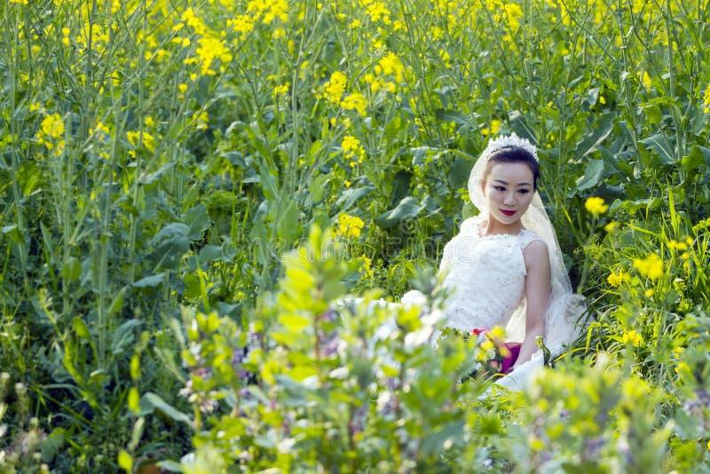 Portraint da noiva com o vestido de casamento branco no campo de flor do cole imagens de stock royalty free
