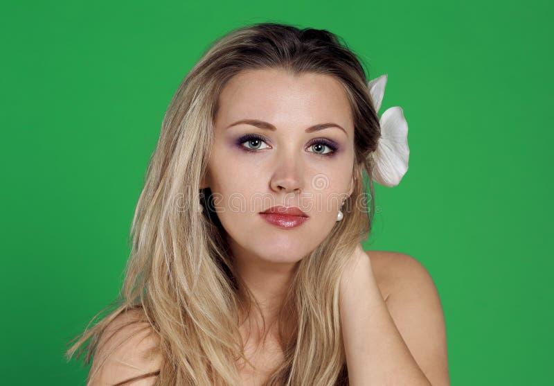 Portrait étroit de la belle femme, sur le fond vert image libre de droits
