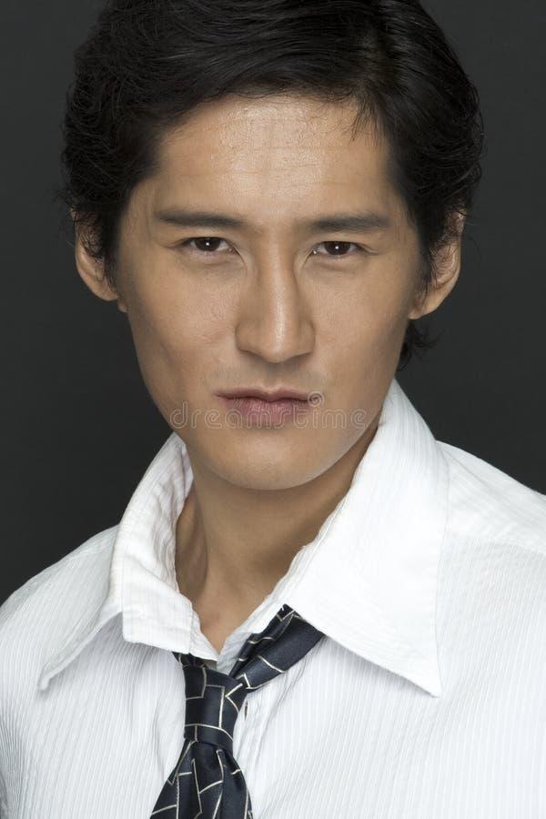 Download Portrait stock photo. Image of worker, korean, male, confident - 102352