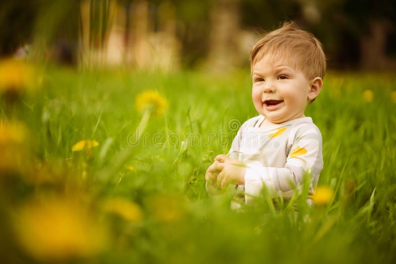 Portrait of adorable baby playing outdoor in the sunny dandelions field. Concept: family values. Portrait of adorable innocent brown-eyed baby playing outdoor in stock photo