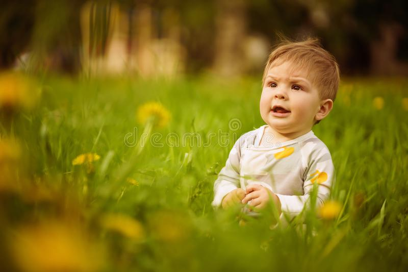 Portrait of adorable baby playing outdoor in the sunny dandelions field. Concept: family values. Portrait of adorable innocent funny brown-eyed baby playing stock image