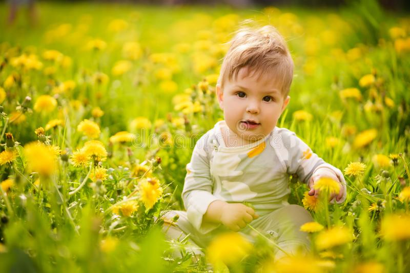 Portrait of adorable baby playing outdoor in the sunny dandelions field. Concept: family values. Portrait of adorable innocent funny brown-eyed baby playing stock photo
