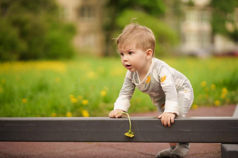 Portrait of adorable baby playing at playground. Concept: family values. Portrait of adorable innocent funny brown-eyed baby playing at outdoor playground royalty free stock photos