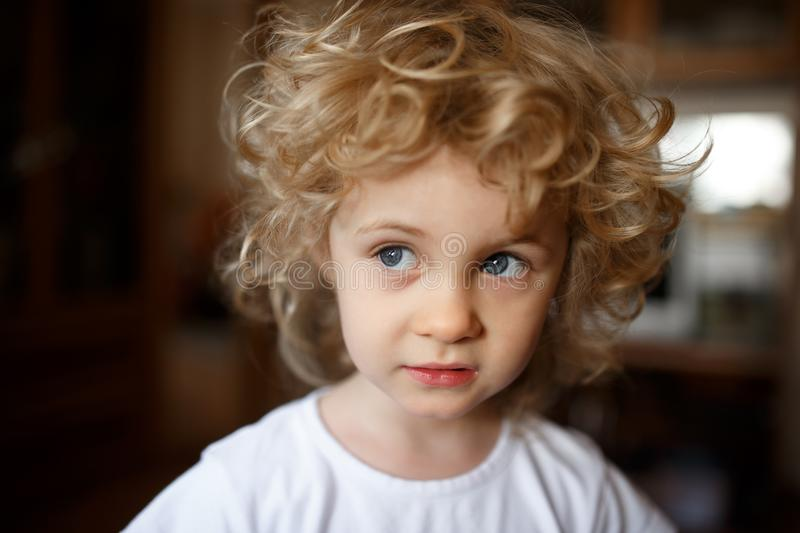 Portrait of adorable little blonde girl with curly hair. royalty free stock photography