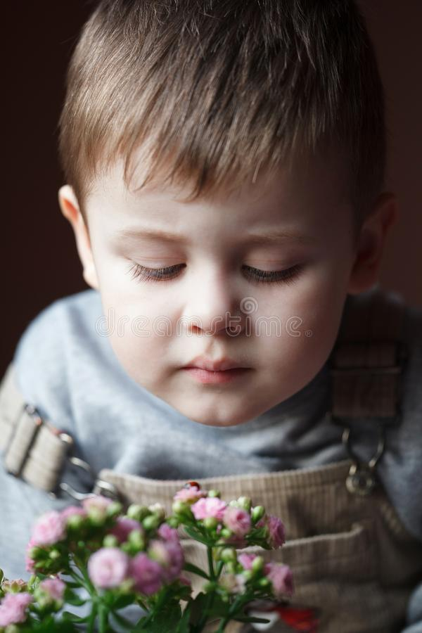 Portrait of adorable little boy starring at ladybug. Toddler child looking at a ladybug. Little scientist entomologist observes insects royalty free stock photo