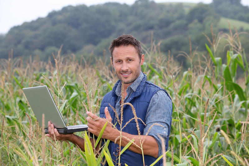 Portrait of agronomist. Agronomist analysing cereals with laptop computer stock images