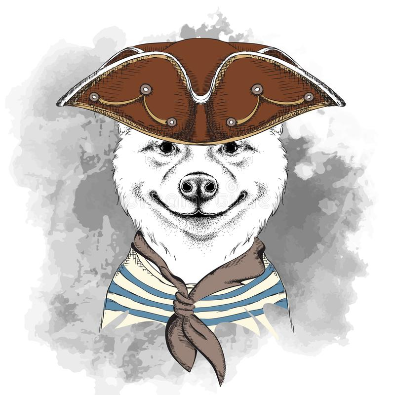 Portrait of the akita inu dog in a pirate hat. Vector illustration. Portrait of the akita inu dog in a pirate hat. Vector vector illustration