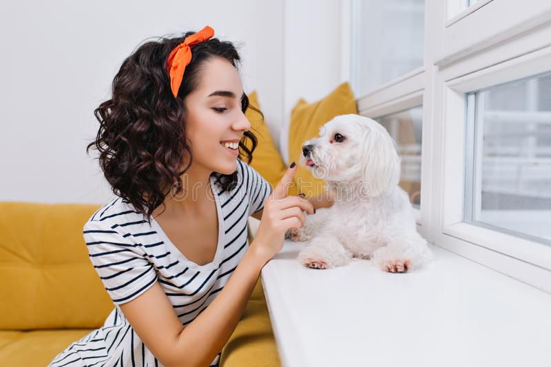 Portrait amazing joyful fashionable young woman playing with little dog in modern apartment. Having fun with home pets royalty free stock image