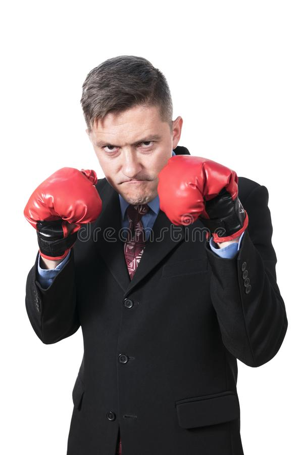 Angry businessman in boxing gloves. Portrait of an angry businessman in boxing red gloves, isolated on white background stock photo