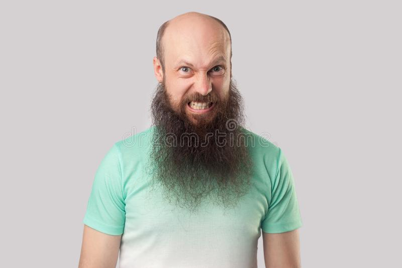 Portrait of angry crazy middle aged bald man with long beard in light green t-shirt standing with mad face, clenching teeth and stock photos