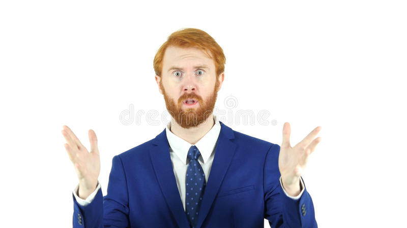 Portrait of Angry Red Hair Beard Businessman, White Background Yelling stock images