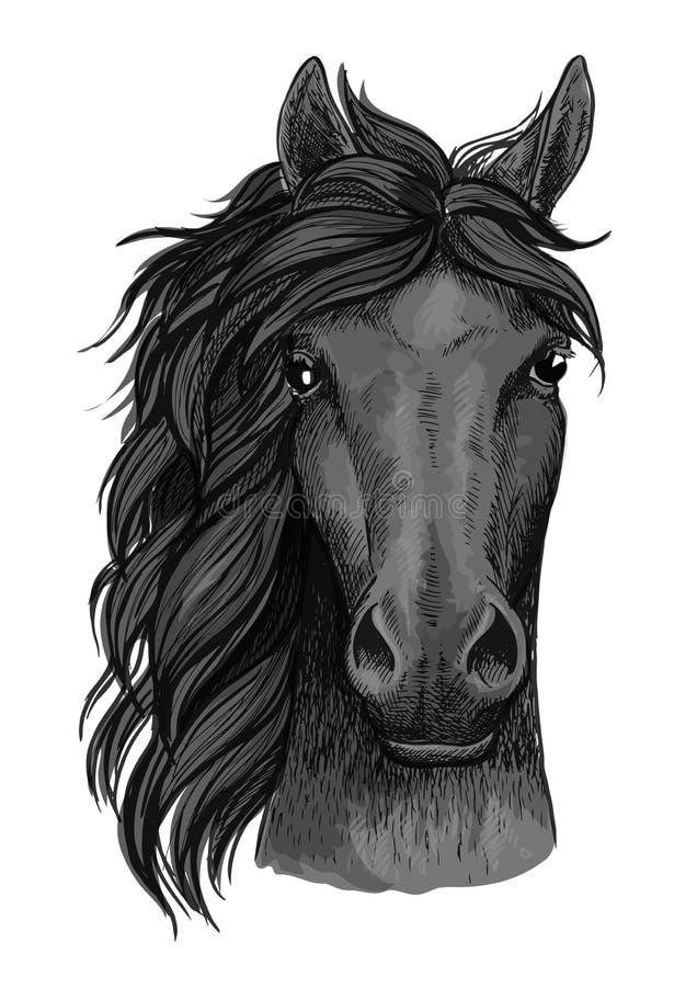 Portrait artistique noir de plein visage de cheval de corbeau illustration libre de droits