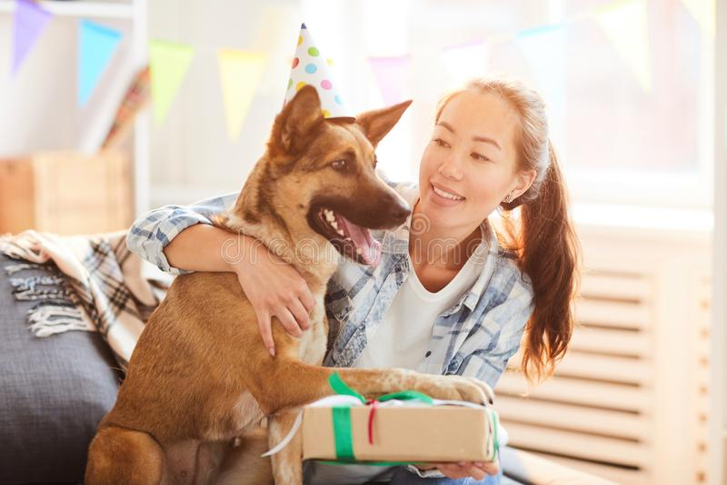 Birthday Present for Dog royalty free stock photos